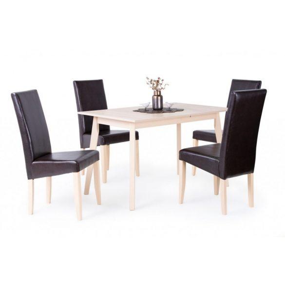 D - Anita asztal 120x80 cm